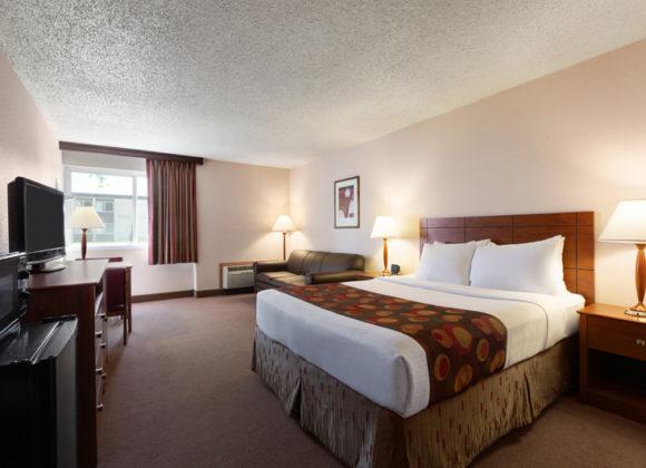 One Queen Bed Standard Room
